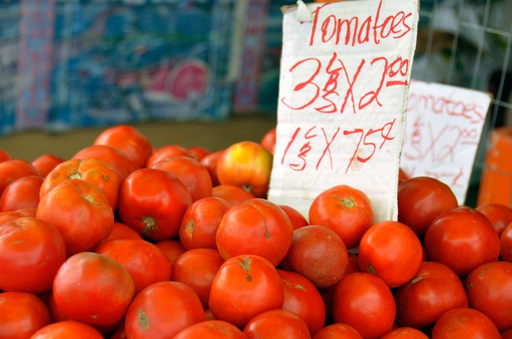tomatoes for sale