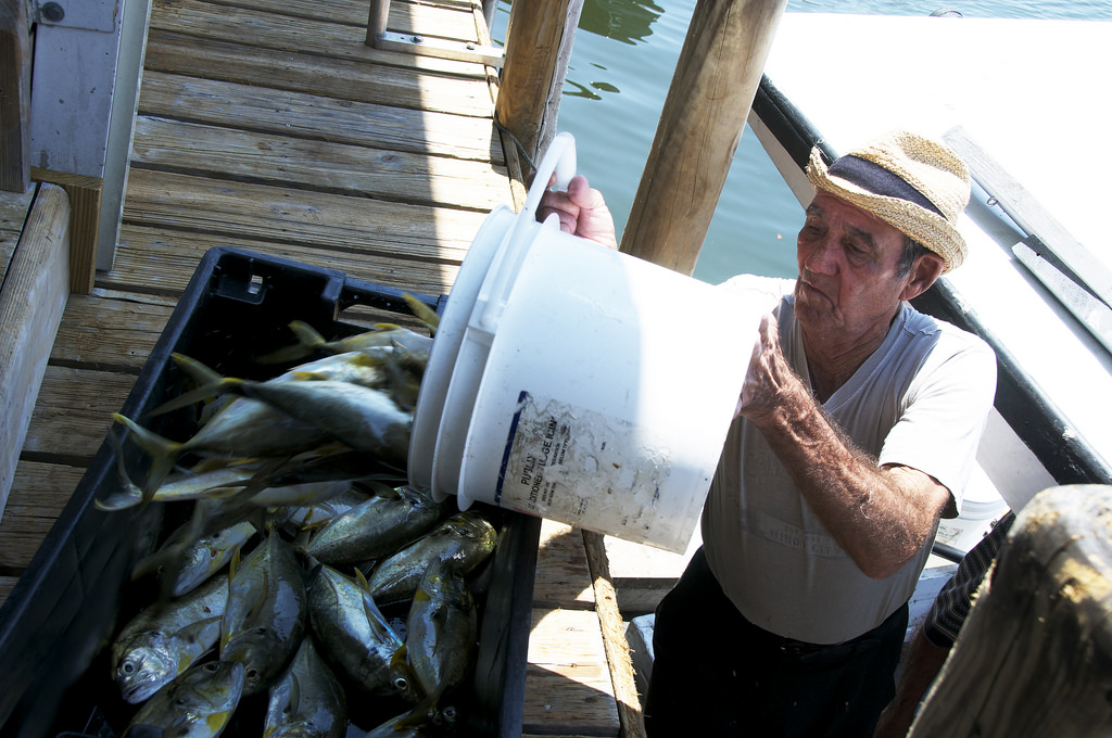 A feast by the miami river at casablanca seafood bar for Fresh fish market miami
