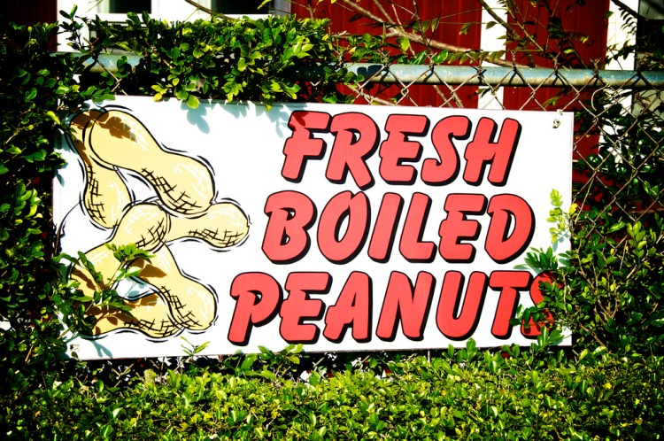 fresh boiled peanuts sign