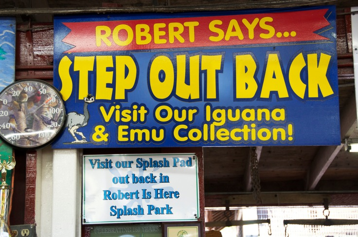 robert says
