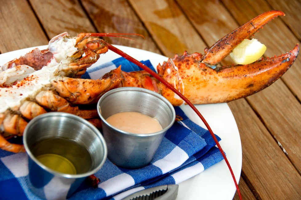 lobster cocktail 1
