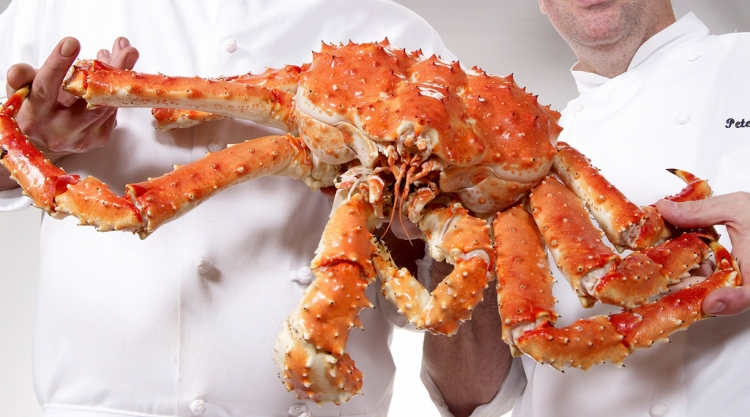 The Chef with his favorite, King Crab. Photo by Red
