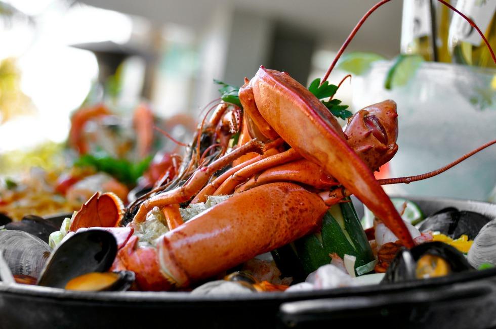 Miami Lobster