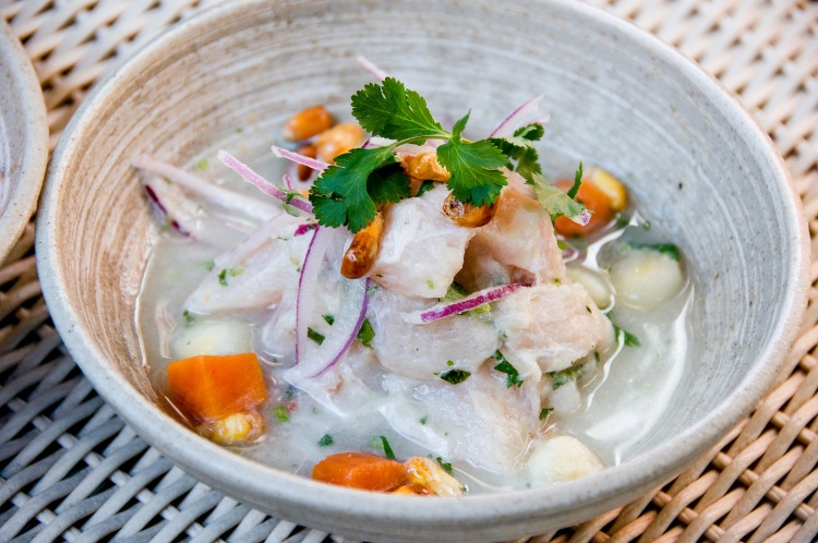 Traditional Ceviche
