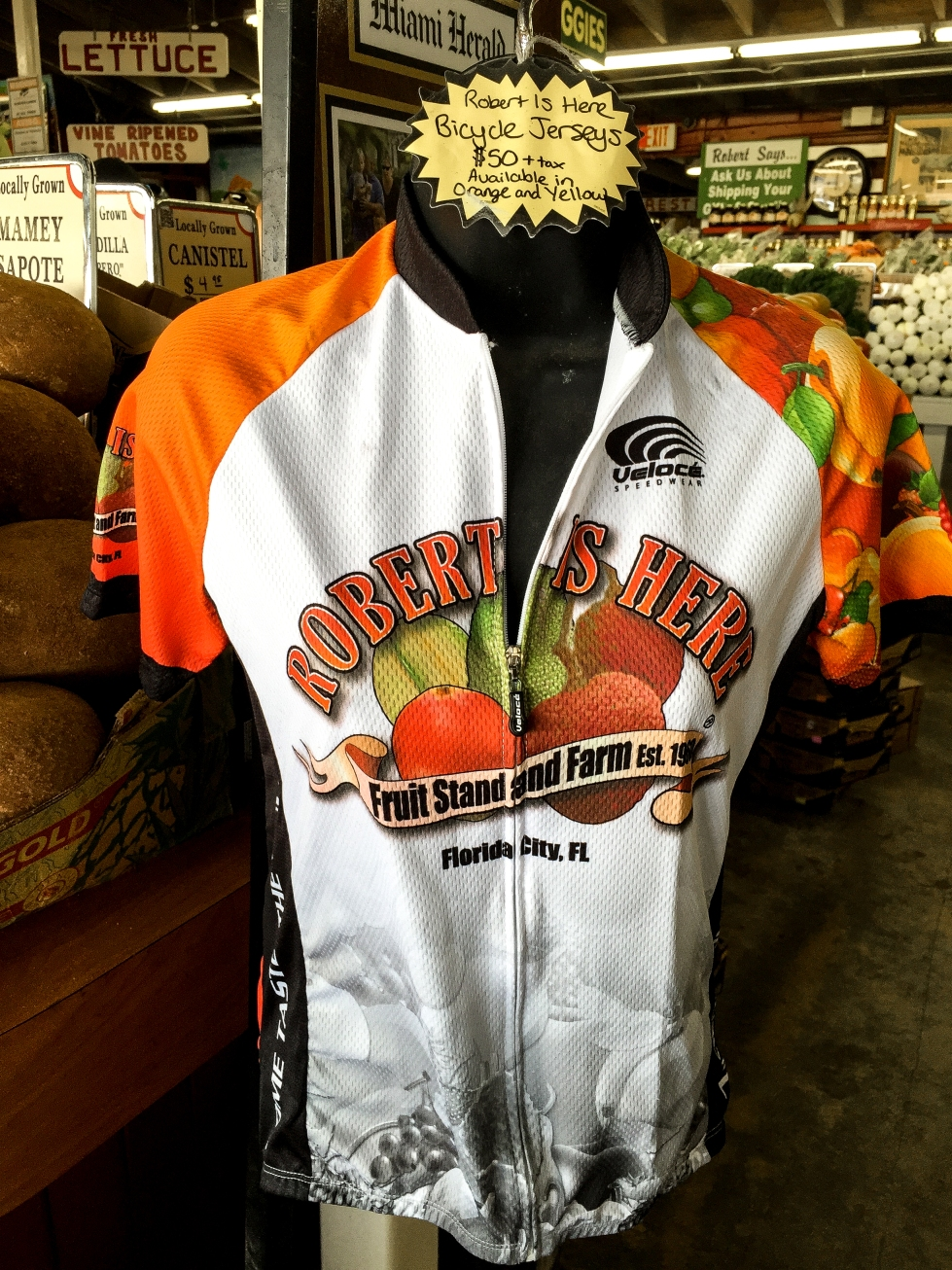 bycicle jersey