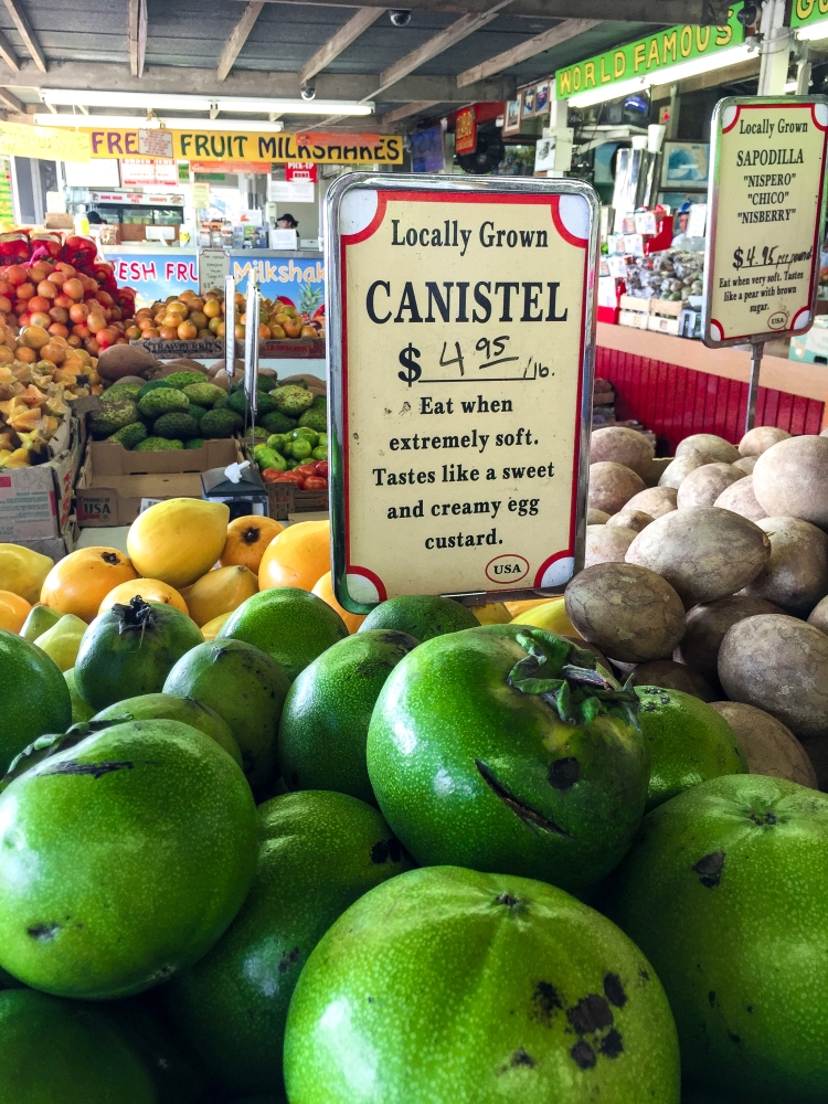 canistel