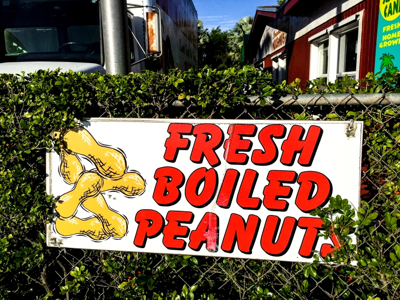 fresh boiled peanuts