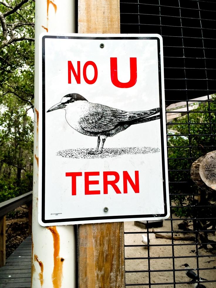 wild bird sanctuary 10