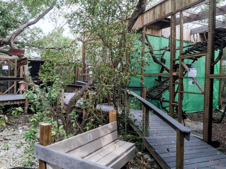 wild bird sanctuary 9