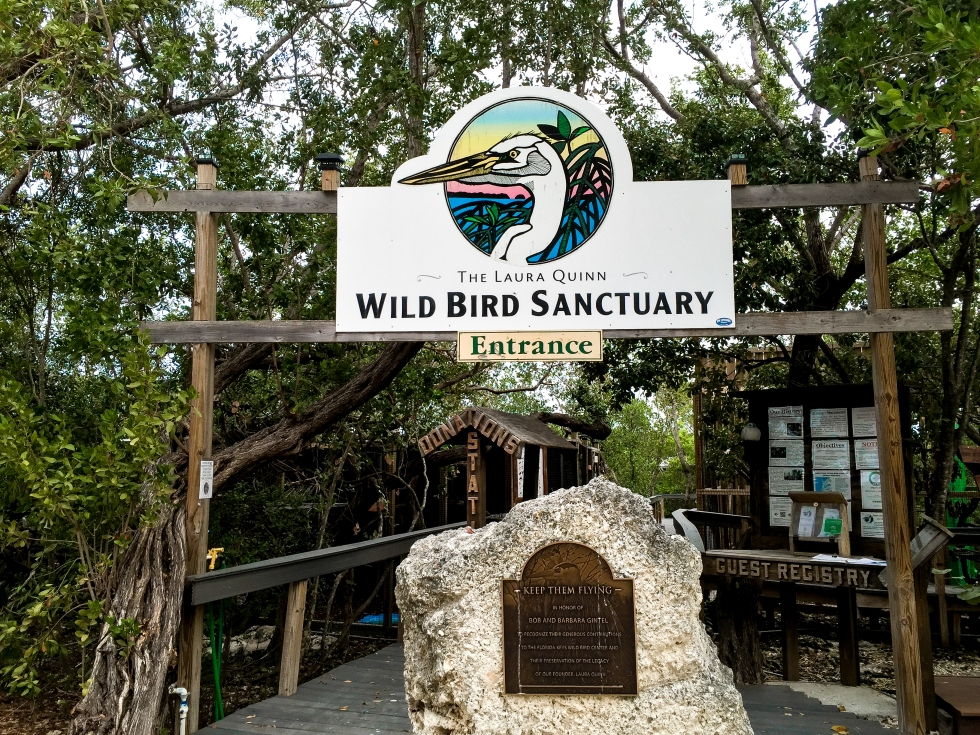 wild bird sanctuary