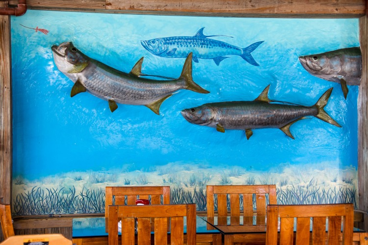 fish-on-the-wall