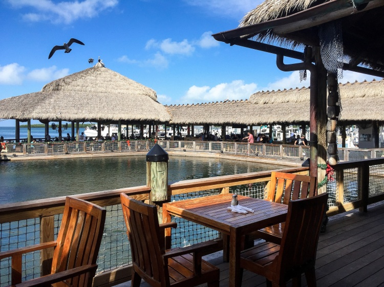 Fun lunch at islamorada fish company restaurant masala for Islamorada fish company menu
