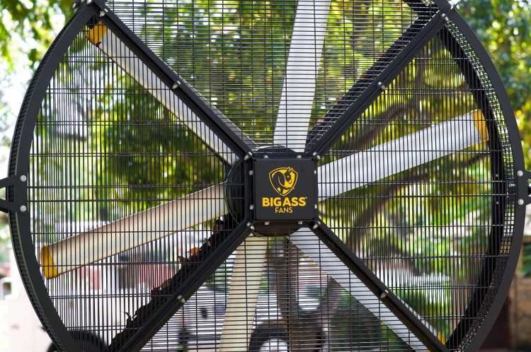 I want a BIGASS fan for my room!