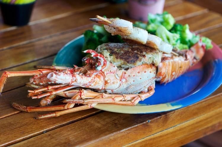 stuffed-florida-lobster